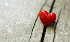 Yerleşik Aşk